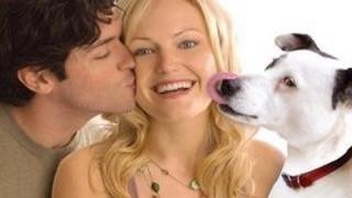A kutyakomédia 2007 (teljes film)