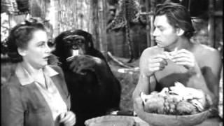 Tarzan es fia 1939  teljes  film myagyarul