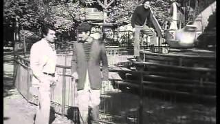 BORS MATE 1968 XIII resz