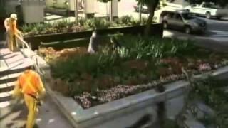 Tornádó New Yorkban – Teljes Film