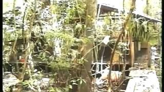 Kolumbia – A kokain földjén