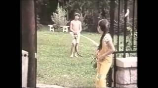Vállald önmagad 1975