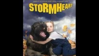 Myrsky, a juhászkutya (2008)