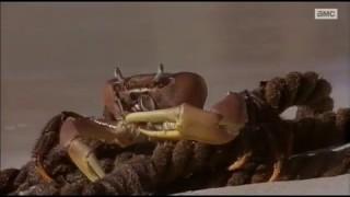 Crusoe Teljes film magyarul